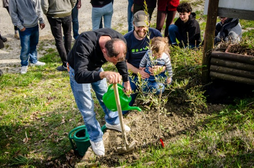 We plant an olive tree in memory of Operation Dove volunteer, Jean Emile